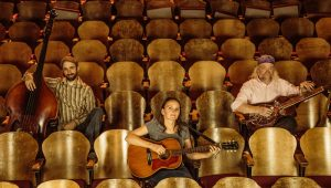 Heather Pierson Acoustic Trio